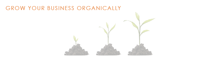 Grow-your-business-organically